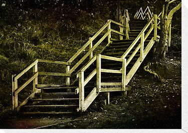 Stairs to Redcliffe. Queensland. Australia. by Lynne Haselden