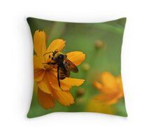 Bumble Bee Busy Throw Pillow