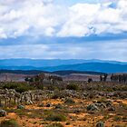 Flinders Ranges - South Australia by Stephen Permezel