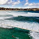 Bondi Swimmer by baddoggy