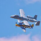 """A10 """"Warhog"""" & P51 """"Mustang"""" 2011 Rochester, NY Airshow by rogerlloyd"""
