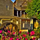 The Old Mill (HDR) by Jamie  Armbruster