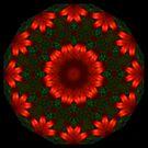 Rose Thread Mandala by Michael Matthews