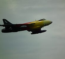 Miss Demeanour  by mike  jordan.