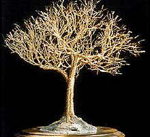 Golden Elm - Wire Tree Sculpture  by Sal Villano