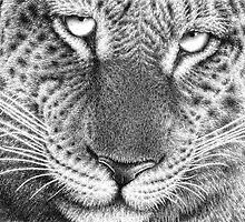 Leopard by Lorna Mulligan