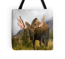 Inquisitive Moose Tote Bag