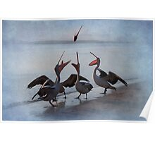 Flying Fish - Pelican Series Poster