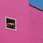 Flower nook in bright pink house - Burano, Italy by tracyannjones