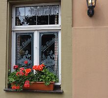 Restaurant window with flowers and lamp - Rothenburg, Germany by tracyannjones