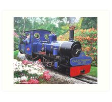 exbury steam railway 10th anniversary  Art Print