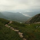 Gros Morne Mountain by RBuchhofer