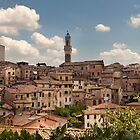 Siena by David Tinsley