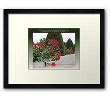 Red Roses for Love Framed Print
