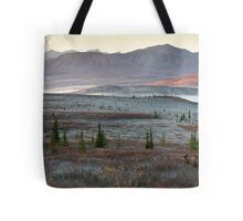 An Autumn Morning in Denali National Park Tote Bag