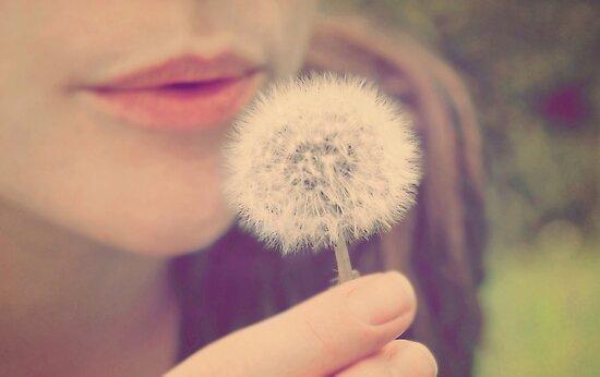 Wish by Matthew Pugh