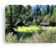 Whitefish Homestead (Montana, USA) Canvas Print
