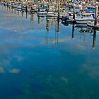 Pillar Point Harbor, Half Moon Bay, CA by Scott Johnson