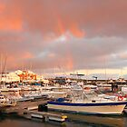 Marina in the Azores by Gaspar Avila