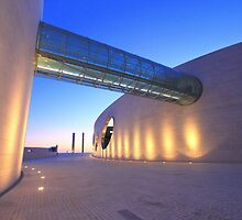 Champalimaud Centre for the Unknown.  by terezadelpilar~ art & architecture