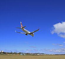 Virgin Landing by Noel Elliot