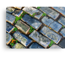 Goodbye Yellow Brick Road - Hello Blue Cobblestone Road ©  Metal Print