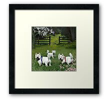 A Grand Day Out ! Framed Print