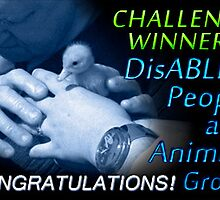CHALLENGE WINNER banner for DisABLED PEOPLE and ANIMALS by Baina Masquelier