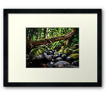In The Shadows ~ Oregon Cascades ~ Framed Print