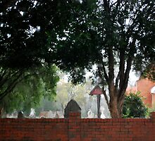 Pinjarra in the Rain by bonhy