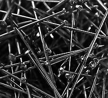 Pins and Needles by Denise Abé