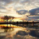Winter Sunset - Lake Wendouree by Dean Gerrard