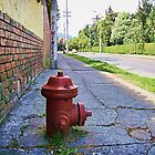 Fire Hydrant by Maria  Gonzalez