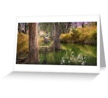 Campbell Creek,Dysart Queensland, Australia Greeting Card