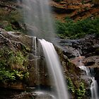 Wentworth Falls Vertical (Mid Falls) 2011 by STEPHEN GEORGIOU