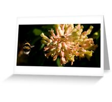 Bumble Bee 2 Greeting Card