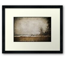 Winter in the suburbs Framed Print