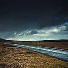 Moorland by Simon Harrison