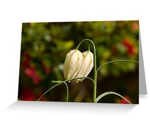 Flower 67 Greeting Card