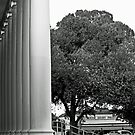 Opera House Columns and Superior Dairy Ice Cream Parlor  by Buckwhite