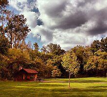 Shelter in Bosky Park by John Hill