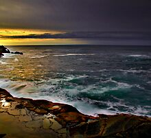 The Look ~ Oregon Coast ~ by Charles & Patricia   Harkins ~ Picture Oregon