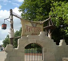 Mutiny bay,Alton towers! by Remmy11