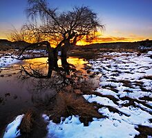 Fire 'n Ice by Rob  Southey