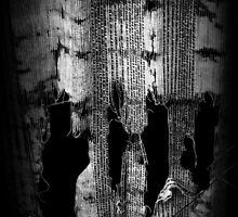 Ghosts in the Window by robomeerkat