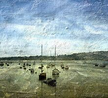 Boat moorings on the River Exe (Devon) by dmacwill