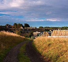 Manor Farm  by James  Key