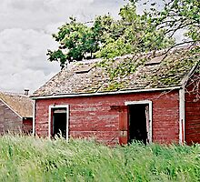 Abandoned South Dakota Farm by Glennis  Siverson