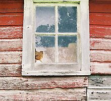 Old Barn Window by Glennis  Siverson