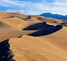 Dune 1 by JimGuy